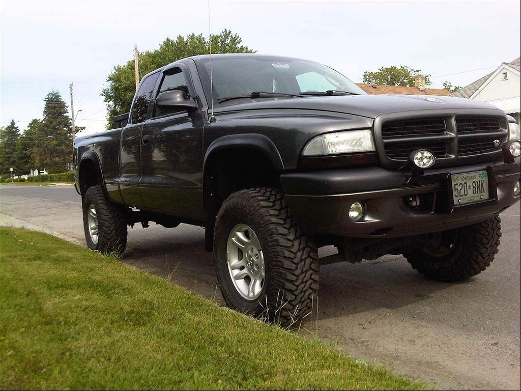 2003 Dodge Dakota Image 8