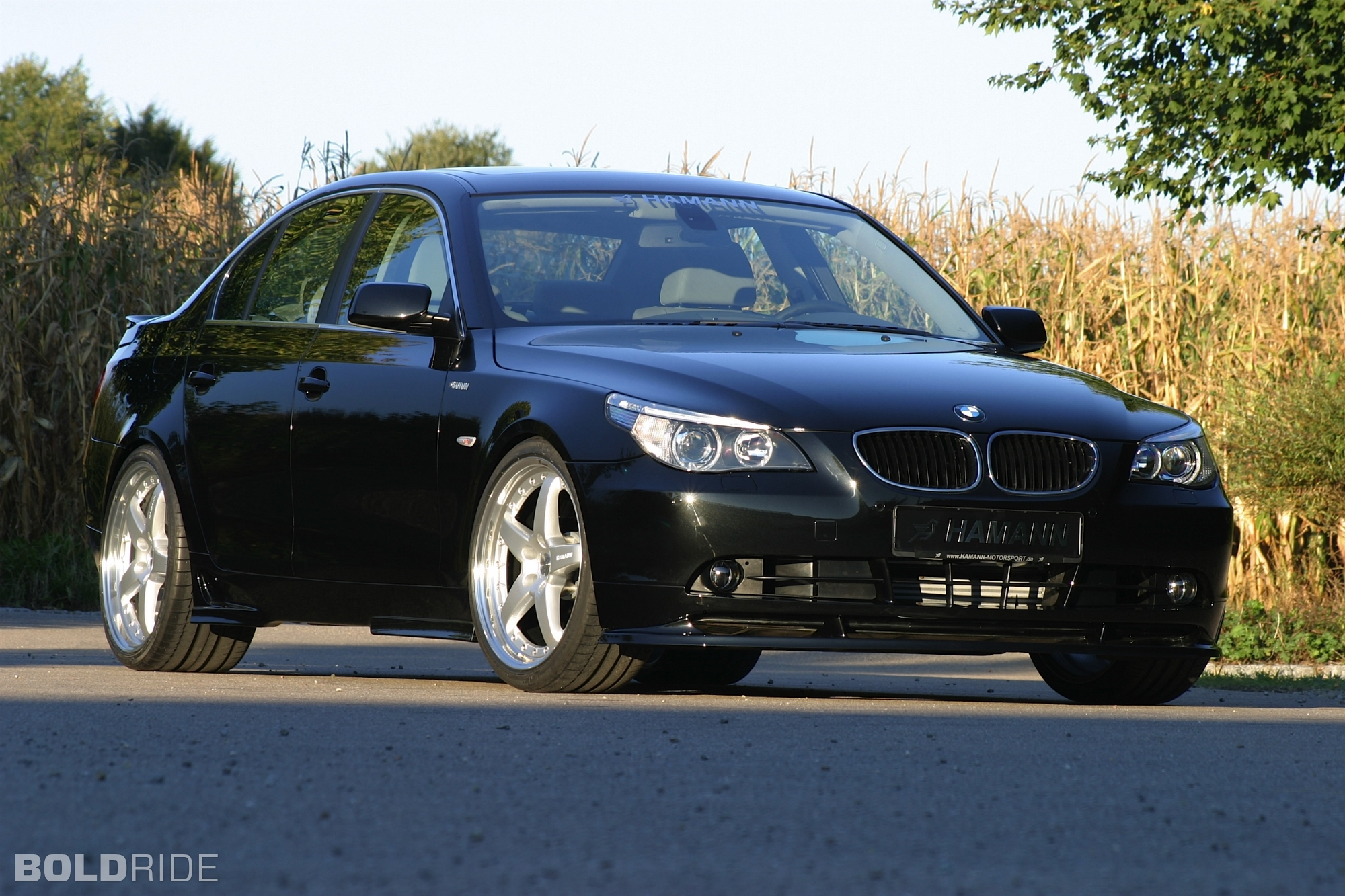 2005 bmw 5 series image 19. Black Bedroom Furniture Sets. Home Design Ideas