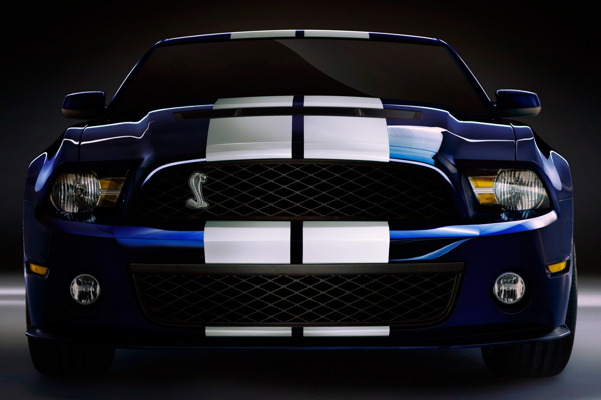 2010 Ford Shelby GT500 Ba exterior #7