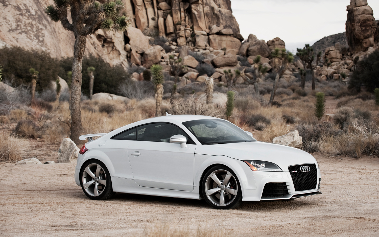 2012 audi tt rs information and photos zombiedrive. Black Bedroom Furniture Sets. Home Design Ideas