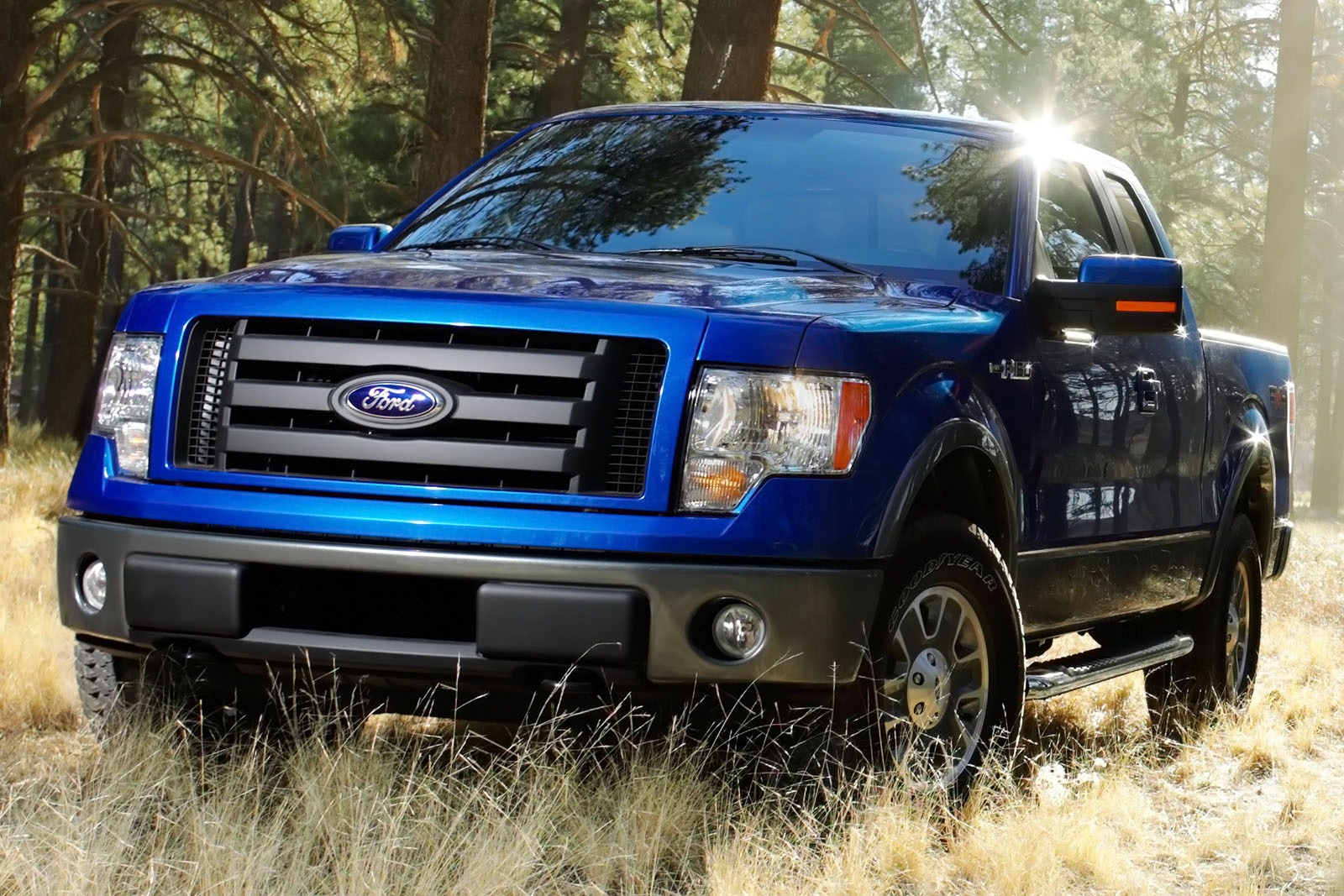 2012 Ford F-150 XL Regula exterior #6