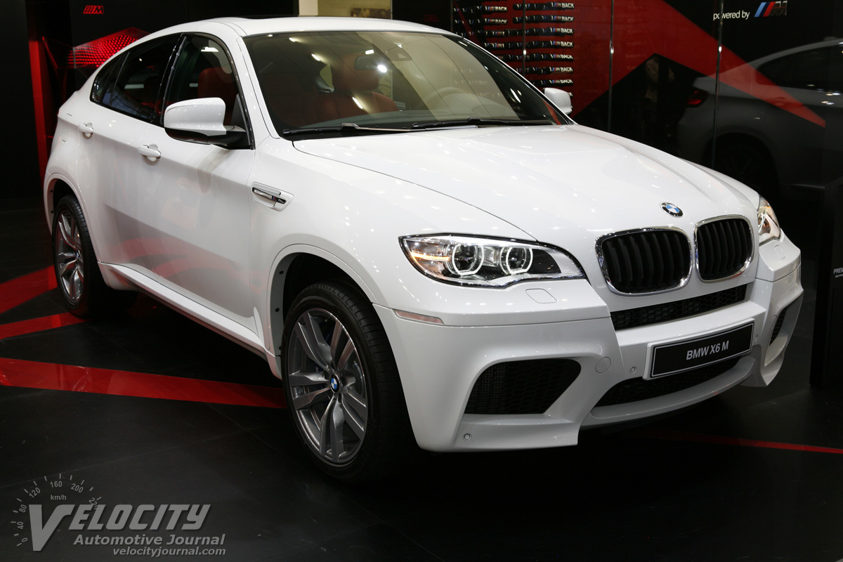 2013 bmw x6 m image 19. Black Bedroom Furniture Sets. Home Design Ideas