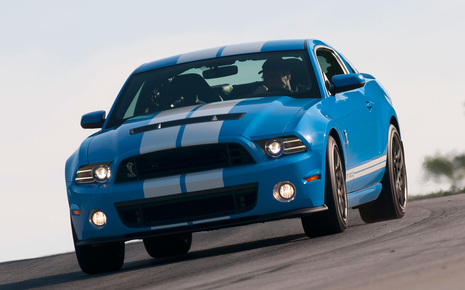 Ford Shelby GT500 #16