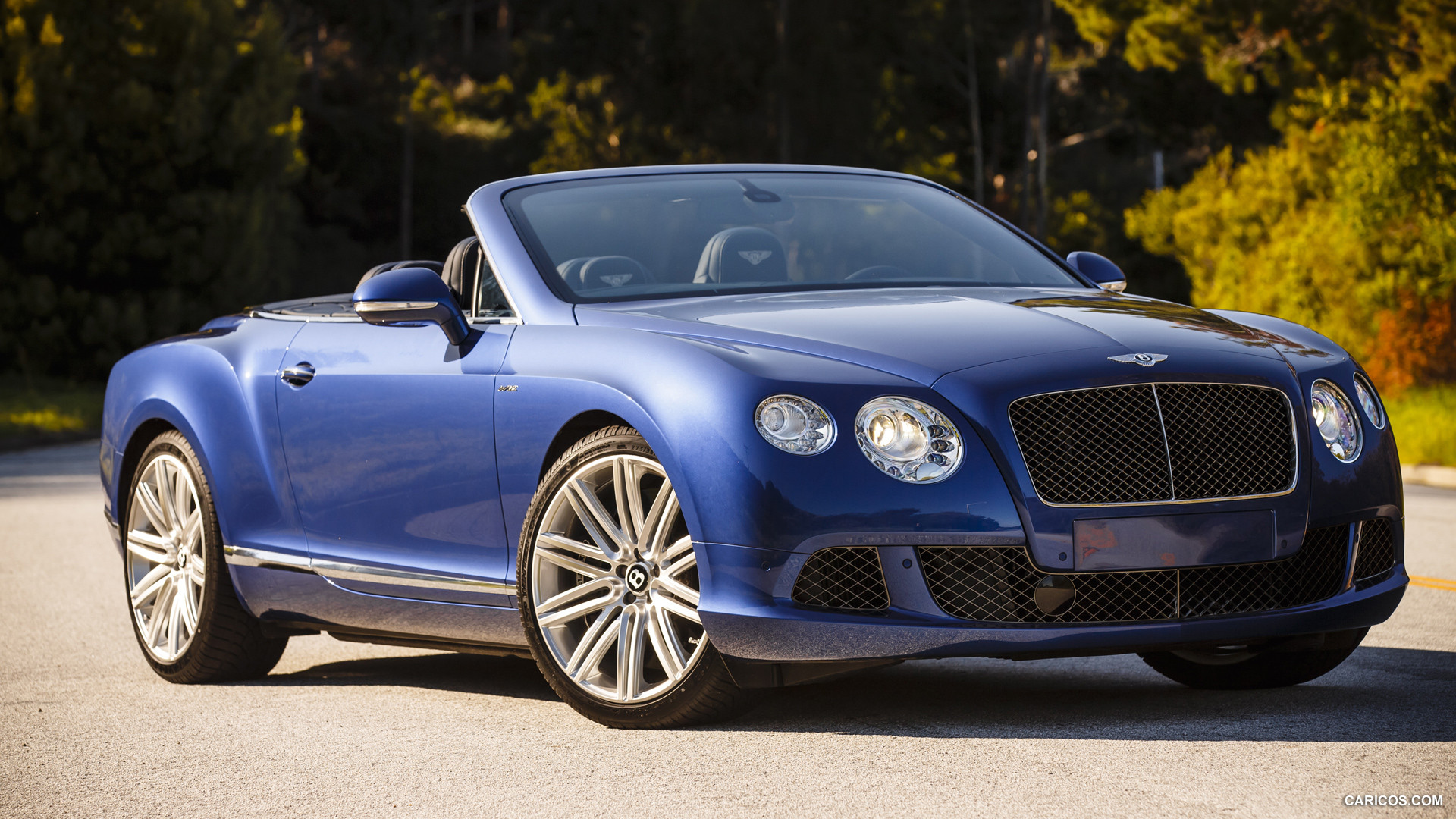 Bentley Continental GT Speed Convertible #13