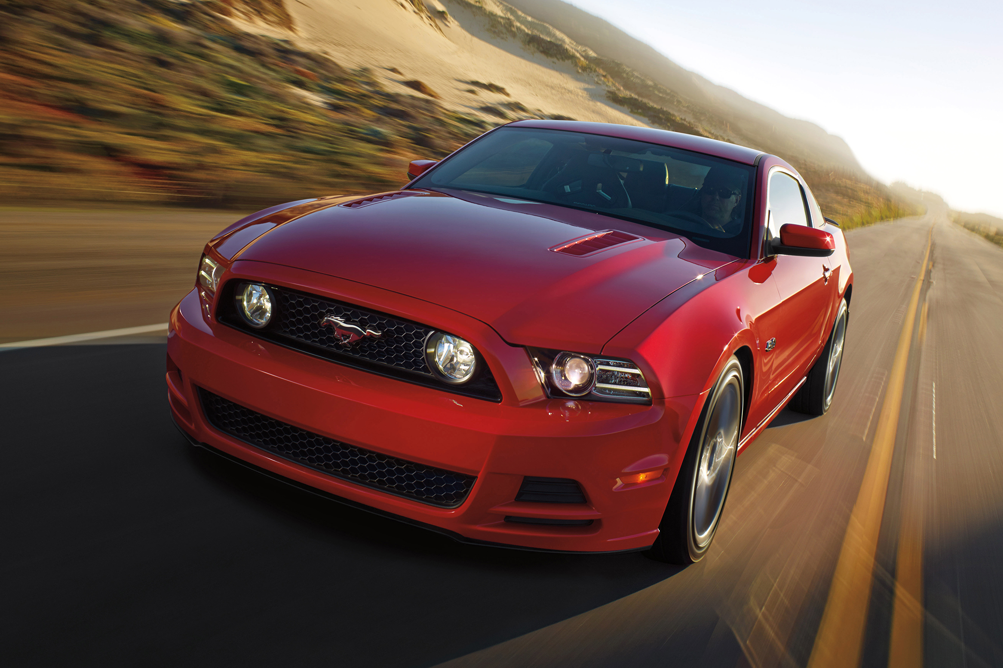 Ford Mustang #14
