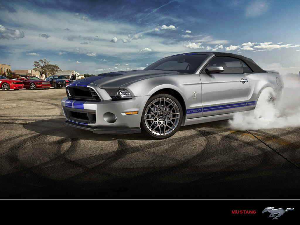 2014 Ford Shelby Gt500 Image 19