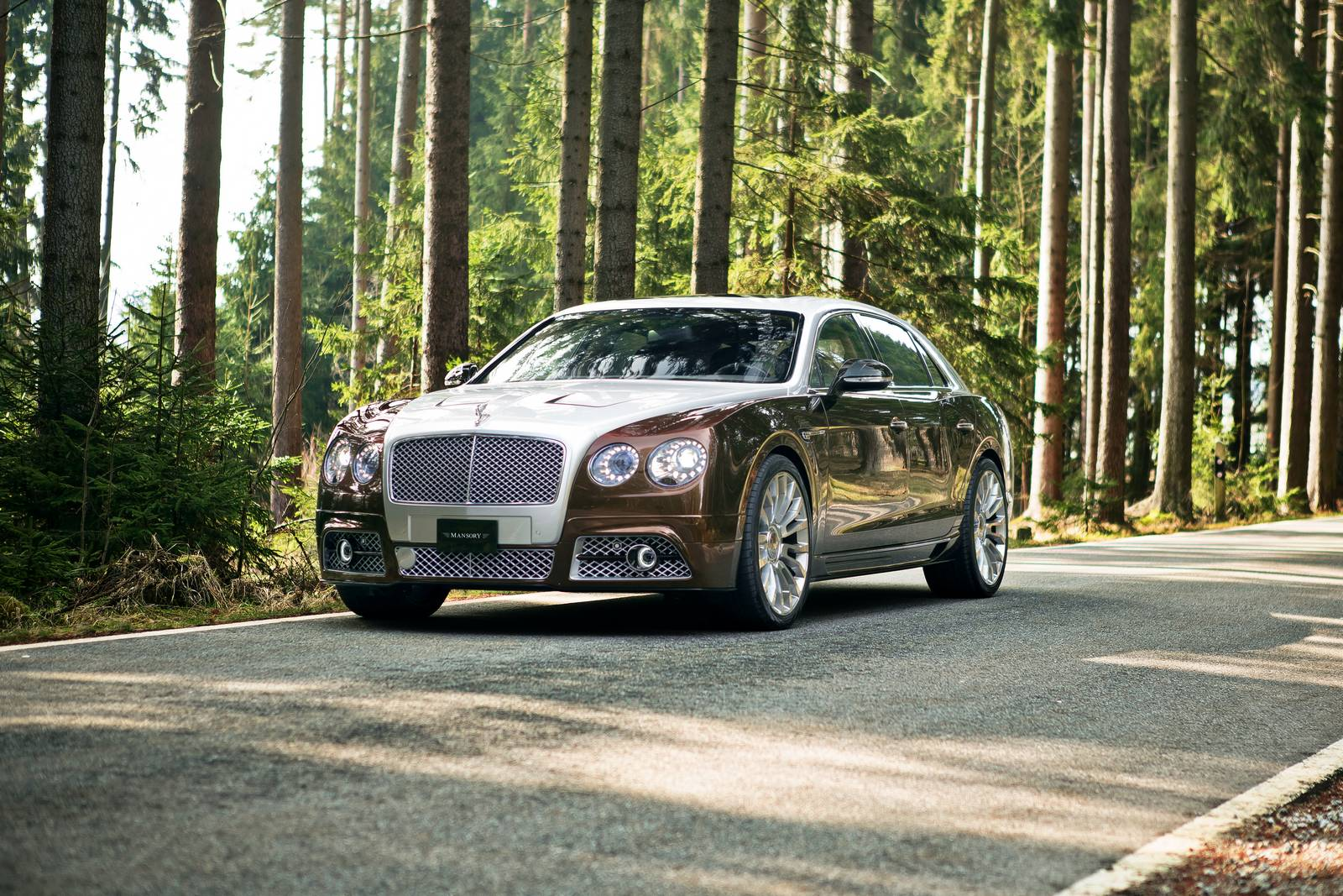 2015 Bentley Flying Spur #11