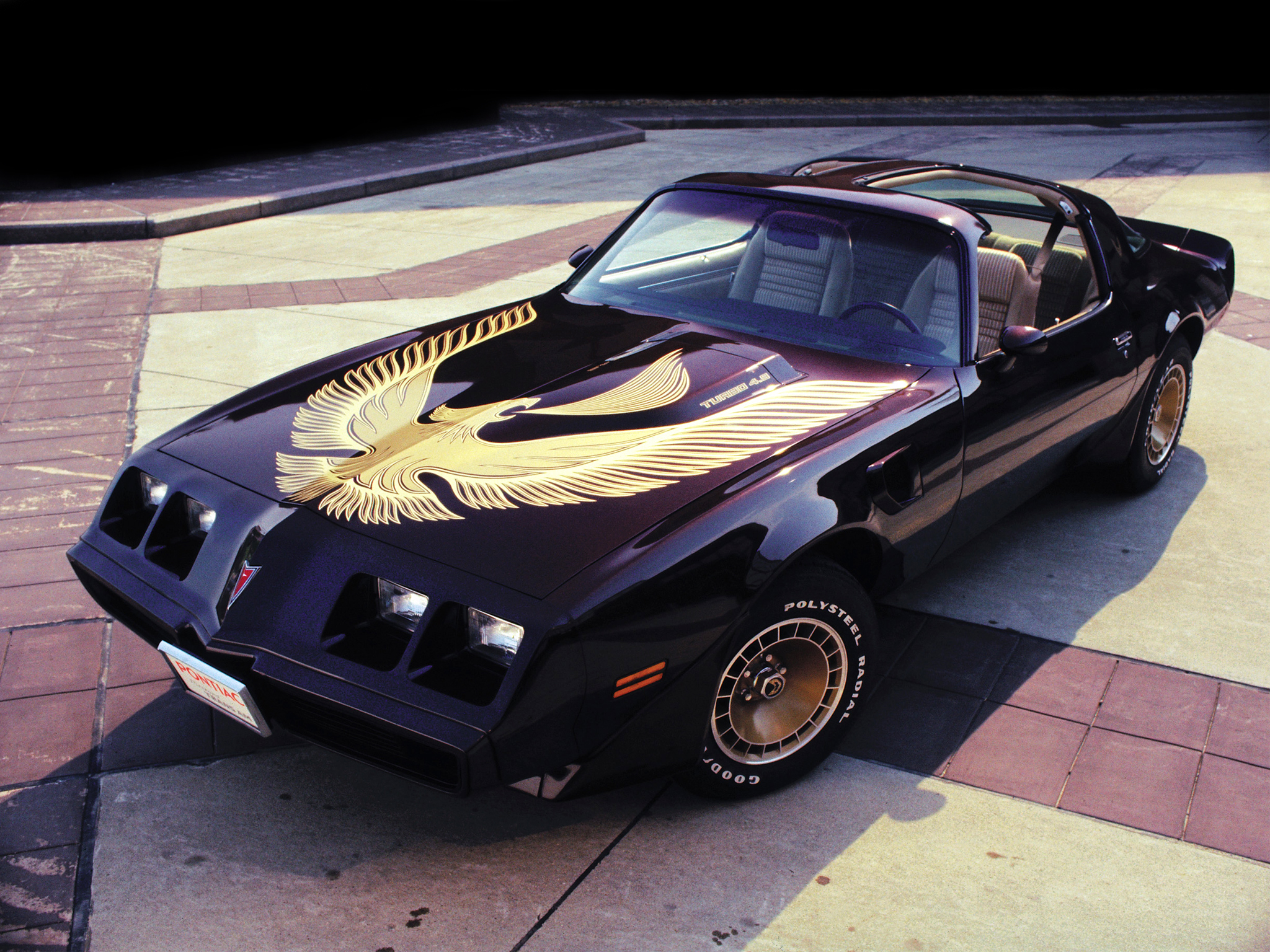 The vicious firework by Pontiac Firebird #4