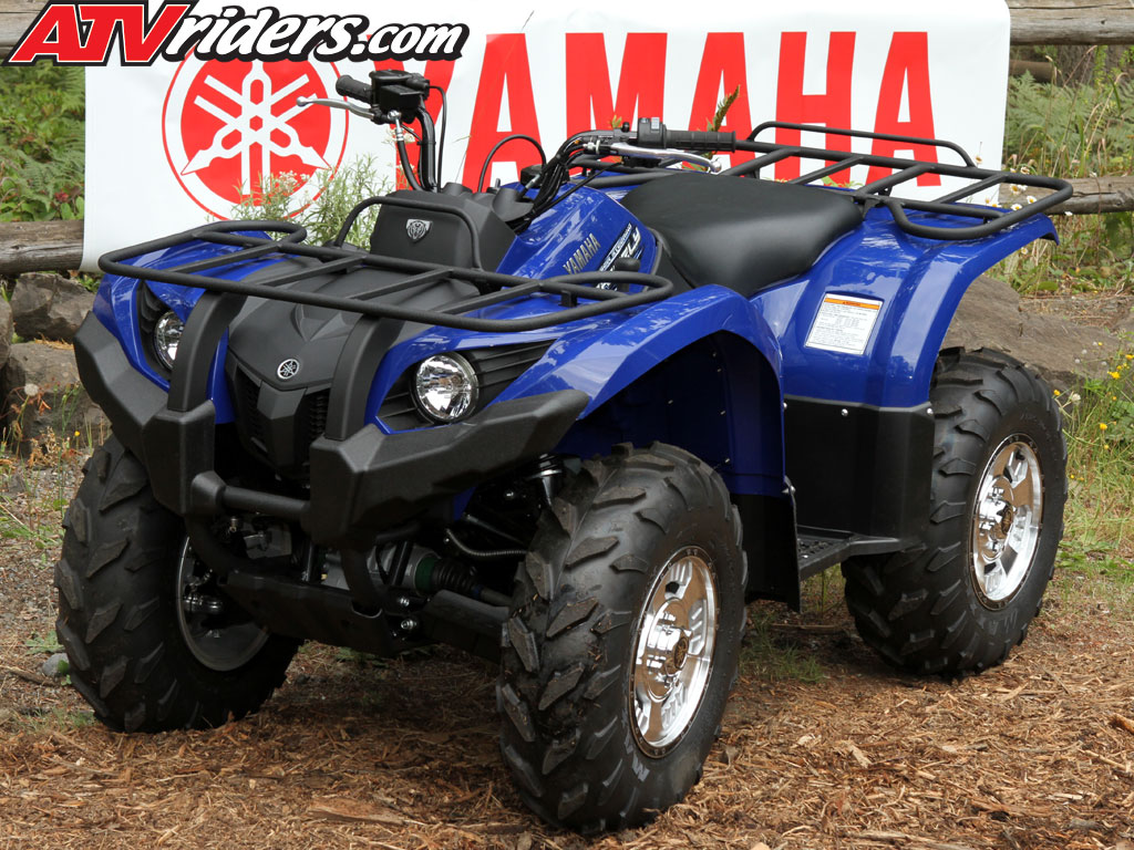 Yamaha Grizzly  Power