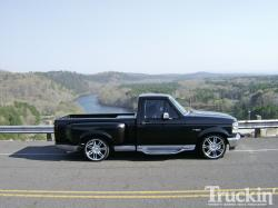 1995 Ford F-150 #4