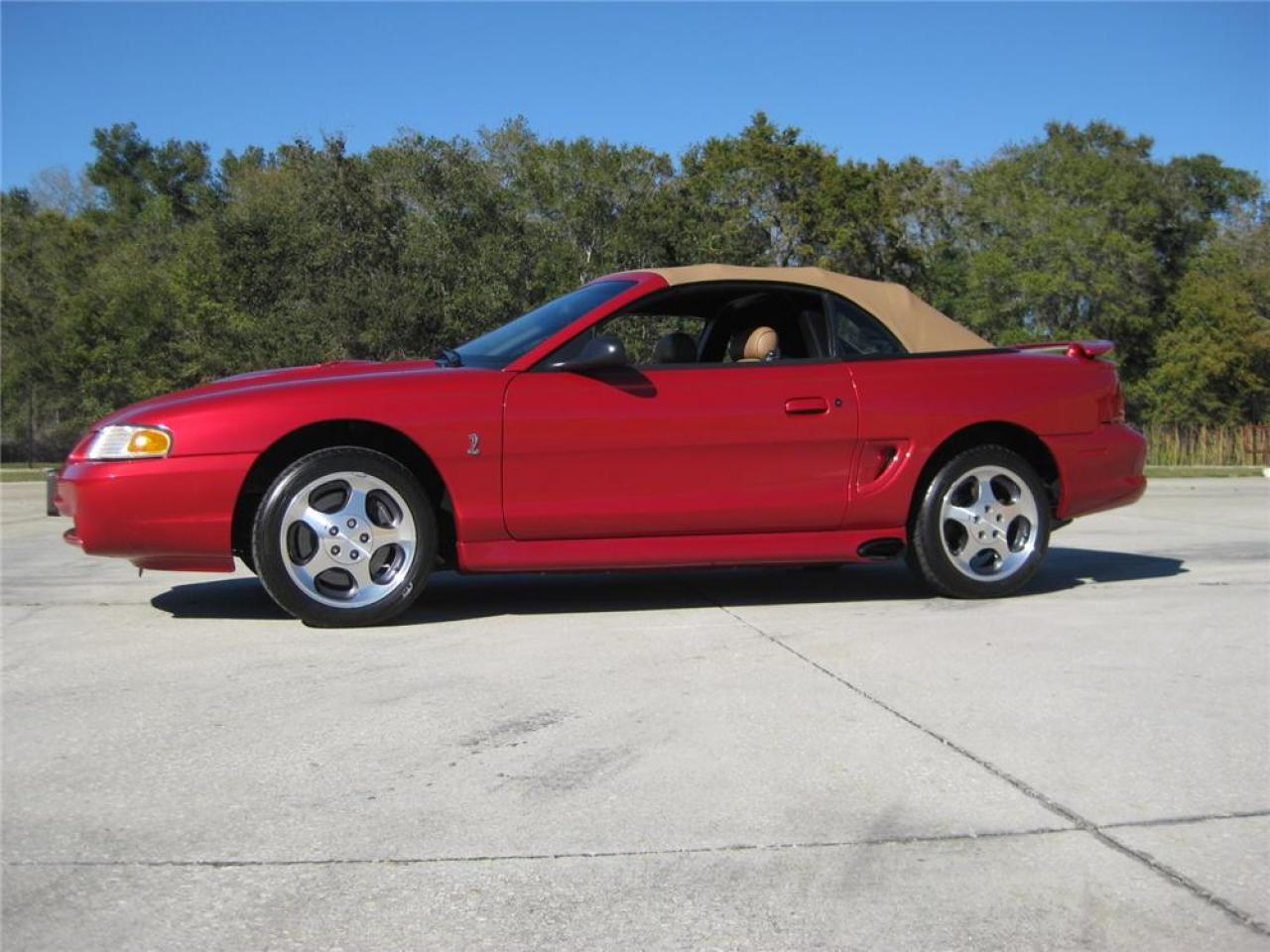 1996 ford mustang svt cobra information and photos zombiedrive. Black Bedroom Furniture Sets. Home Design Ideas