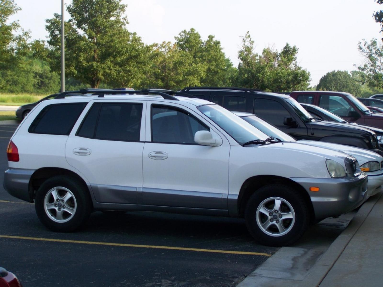 2002 Hyundai Santa Fe #4