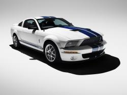 2007 Ford Shelby GT500 #19