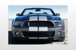 2010 Ford Shelby GT500 #6