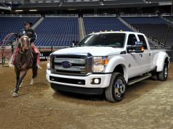 2015 Ford F-450 Super Duty #13